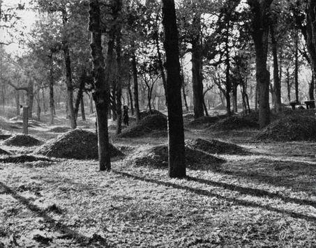 日军占领曲阜与孔德成民族大义图片